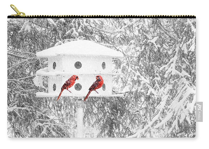 Snow Carry-all Pouch featuring the photograph Snowbirds by Geoff Crego