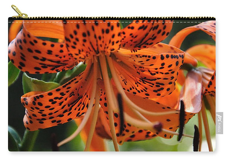 Tigerlily Carry-all Pouch featuring the photograph Heirloom Beauty by Sonja Dover