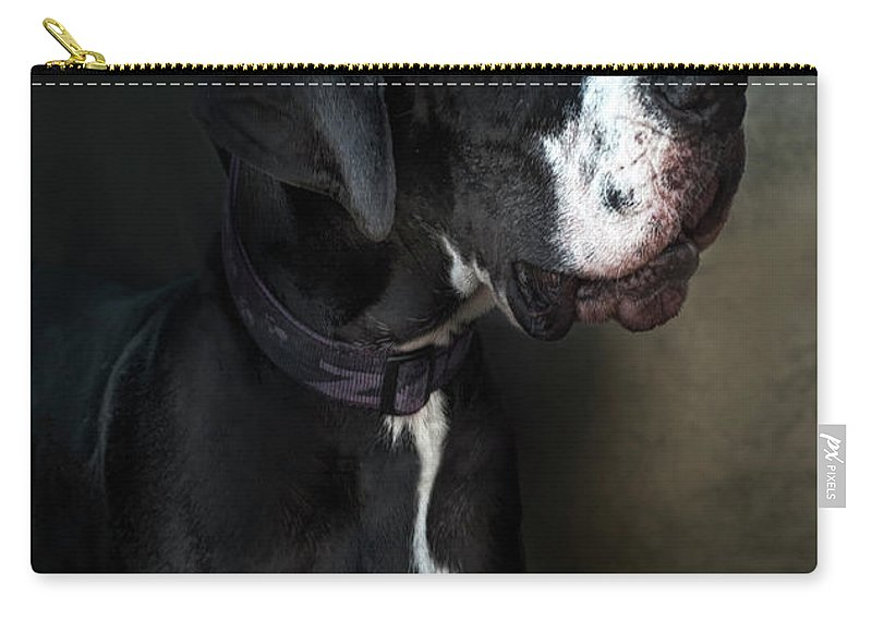 Pets Carry-all Pouch featuring the photograph Helga by Silversaltphoto.j.senosiain