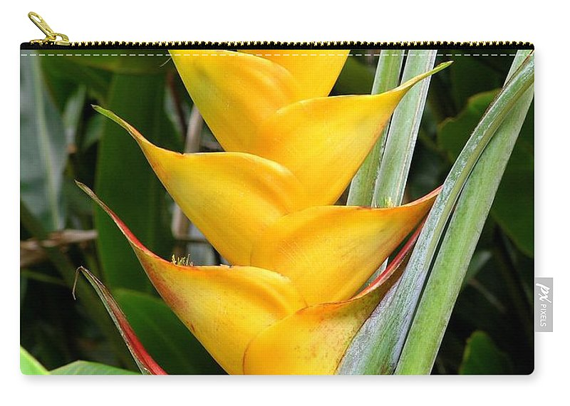 Heliconia Caribea Carry-all Pouch featuring the photograph Heliconia Caribea by Mary Deal
