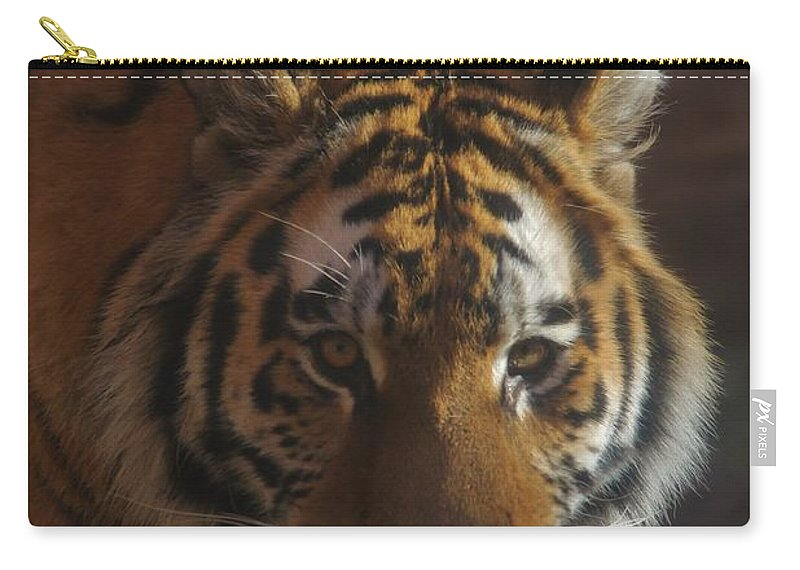 Tiger Carry-all Pouch featuring the photograph Hello 2 by Tonya Hance