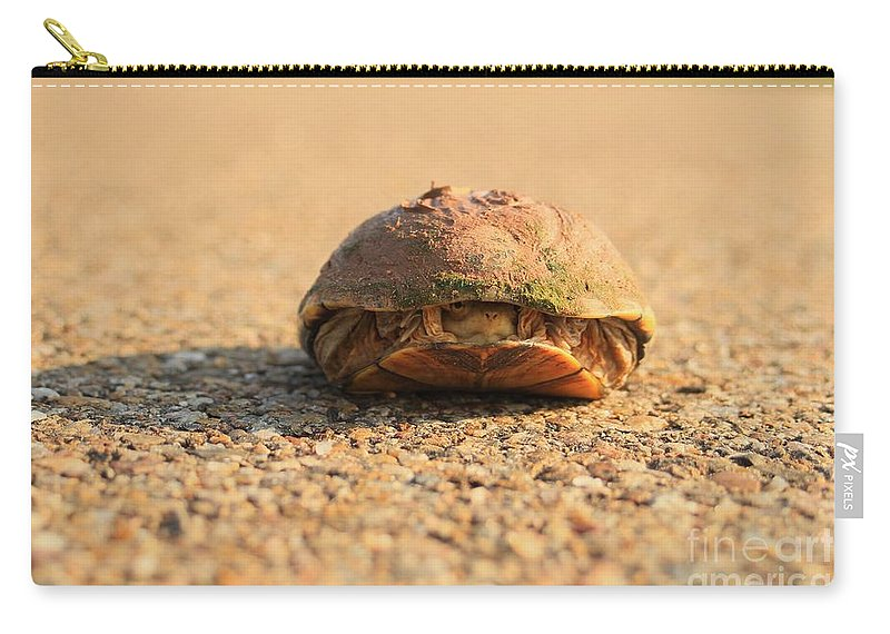 Turtle Carry-all Pouch featuring the photograph Hello Anyone Home by Ashley M Conger