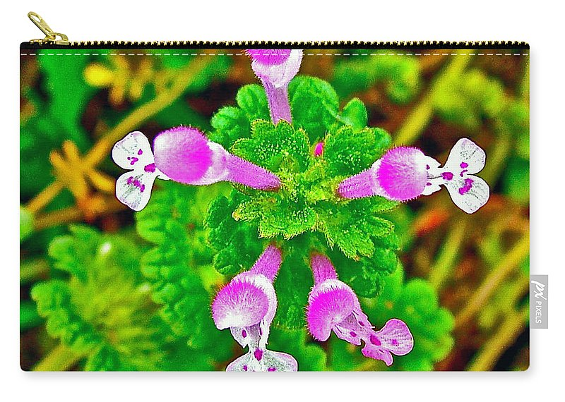 Henbit At Chickasaw Village Site At Mile 262 Of Natchez Trace Parkway Carry-all Pouch featuring the photograph Henbit At Chickasaw Village Site At Mile 262 Of Natchez Trace Parkway-mississippi by Ruth Hager
