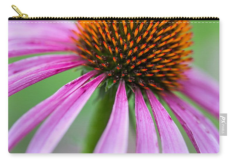 Purple Cone Flower Carry-all Pouch featuring the photograph Her Beauty by Dale Kincaid