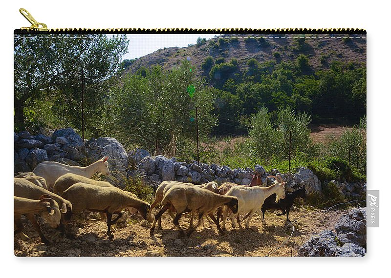 Mutton Carry-all Pouch featuring the photograph Herd Of Sheep In Tuscany by Dany Lison