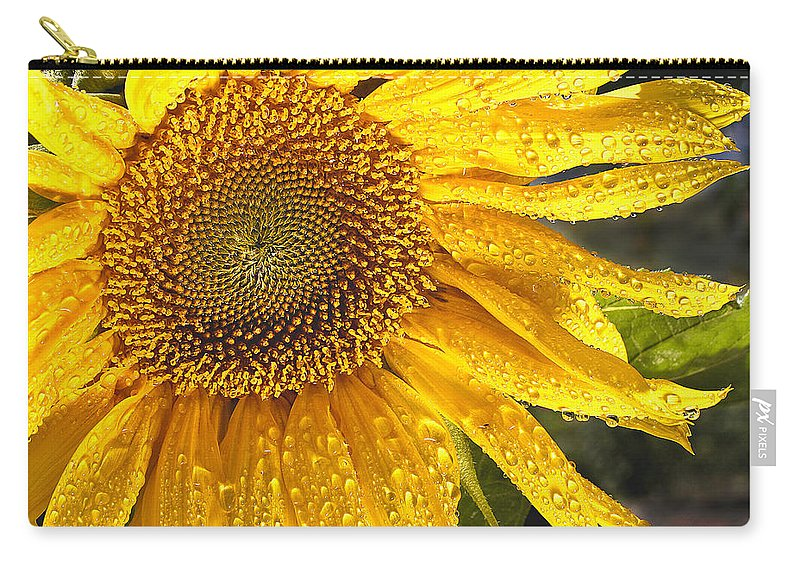 Flower Carry-all Pouch featuring the photograph Here Comes The Sun by Jean Noren