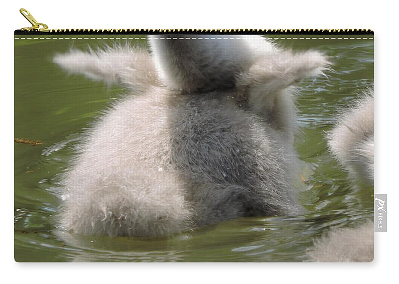 Cygnet Carry-all Pouch featuring the photograph Here I Come by Regine Brindle