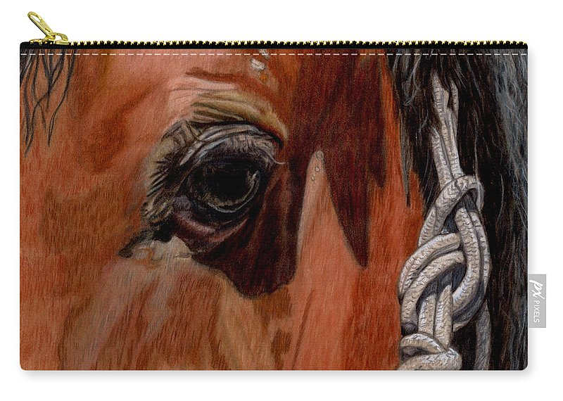 Close Up Of Horse Carry-all Pouch featuring the painting Here Is Looking At You by Gail Seufferlein
