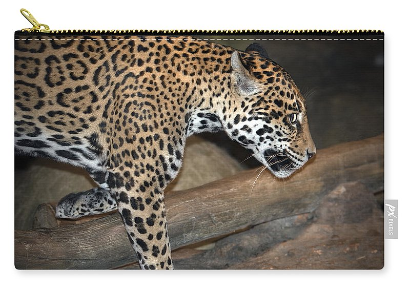Jaguar Carry-all Pouch featuring the photograph Here Kitty Kitty by Jayne Gohr