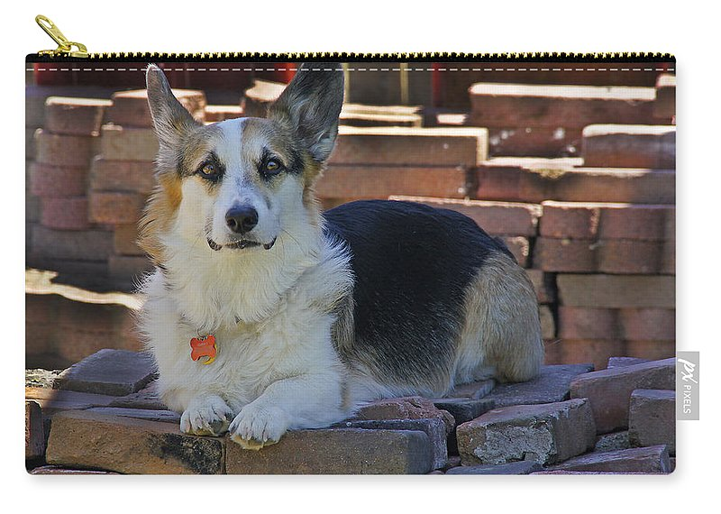 Johnny Carry-all Pouch featuring the photograph Here's Looking At You by Mick Anderson
