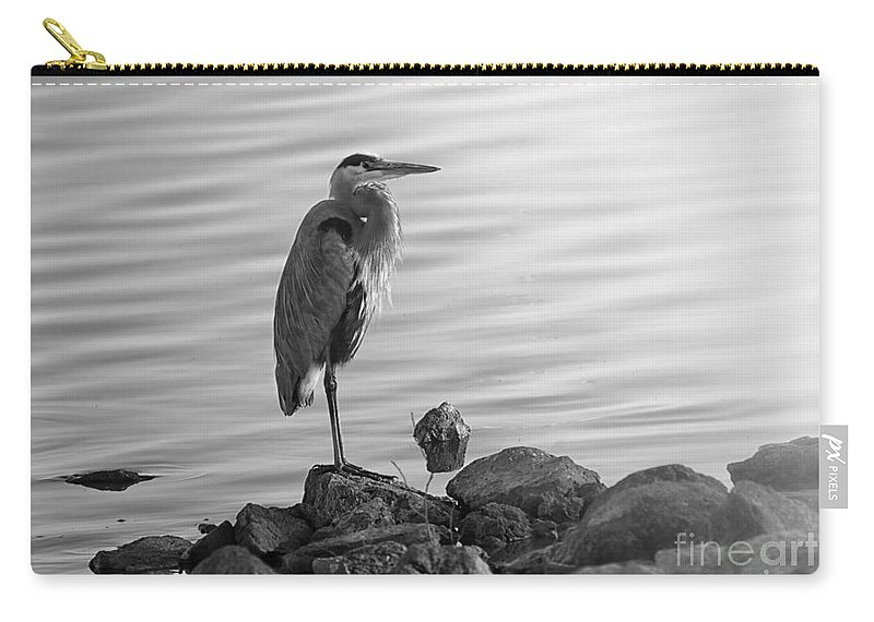 Great Blue Heron Carry-all Pouch featuring the photograph Heron In Black And White by Betty LaRue