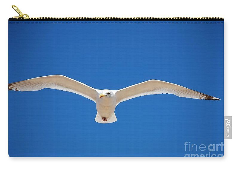 Herring Carry-all Pouch featuring the photograph Herring Gull In Flight by David Fowler