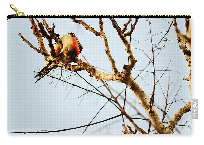 Woodpecker Carry-all Pouch featuring the photograph He's Looking At Me by Linda Kerkau
