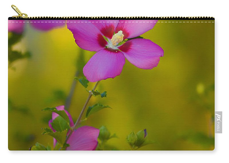 Hibiscus Carry-all Pouch featuring the photograph Hibiscus 01 by Thomas Woolworth