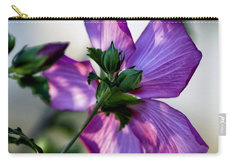 Hibiscus Carry-all Pouch featuring the photograph Hibiscus 02 by Thomas Woolworth