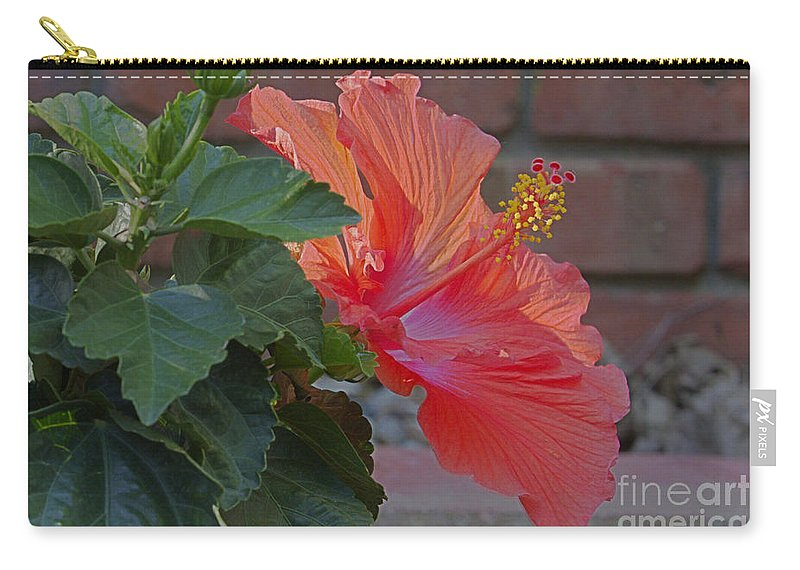 Environment Carry-all Pouch featuring the photograph Hibiscus 3 by Alan Look