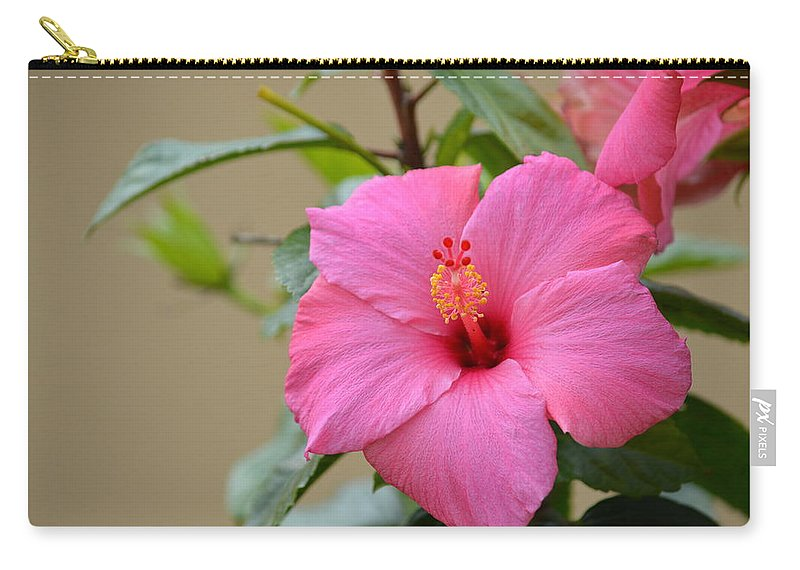 Florida Carry-all Pouch featuring the photograph Hibiscus by Linda Kerkau