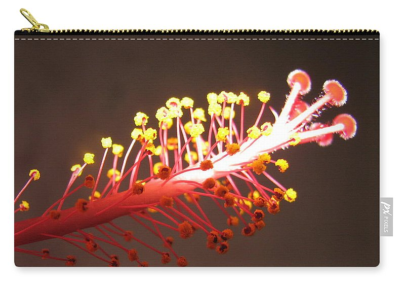 Hibiscus Carry-all Pouch featuring the photograph Hibiscus by Mary Ellen Mueller Legault