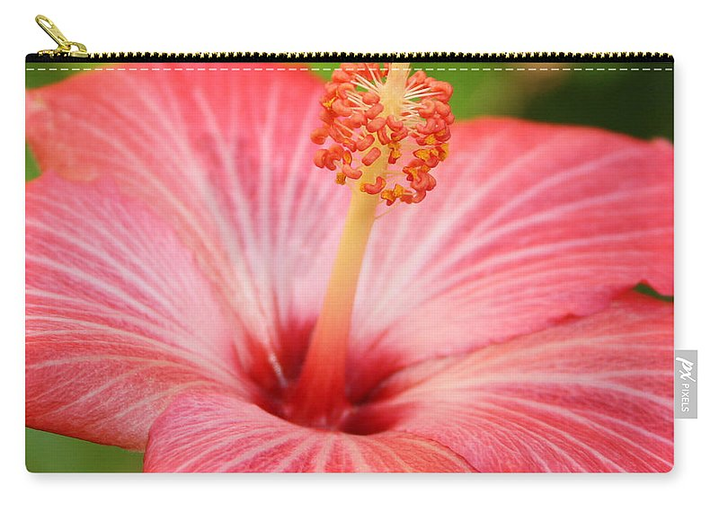 Hibiscus Carry-all Pouch featuring the photograph Hibiscus - Square by Carol Groenen