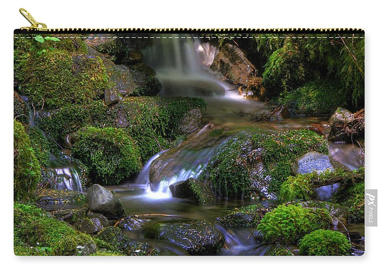 Brook Carry-all Pouch featuring the photograph Hidden Brook by John Absher