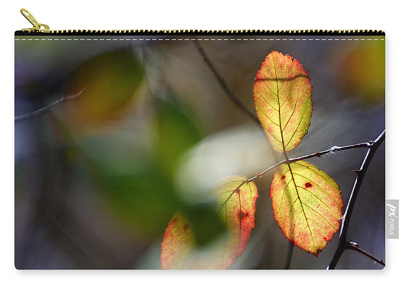 Landscape Carry-all Pouch featuring the photograph Hidden Forest Leaves by Guido Montanes Castillo