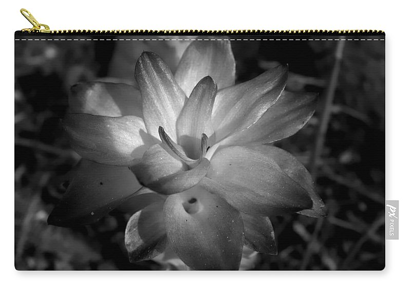 Lillies Carry-all Pouch featuring the photograph Hidden Lilly by Debra Forand