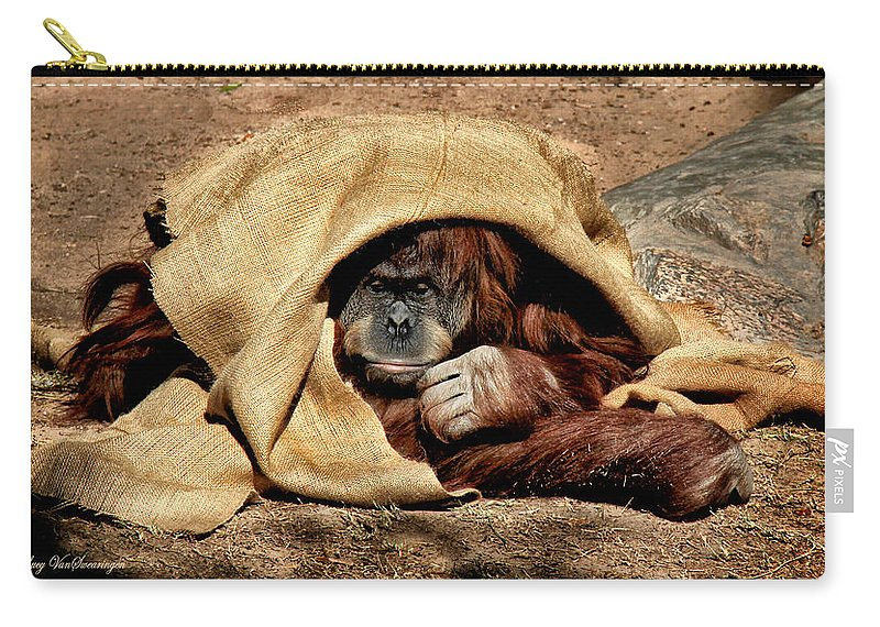 Orangutan Carry-all Pouch featuring the photograph Hiding In Plain Sight by Lucy VanSwearingen