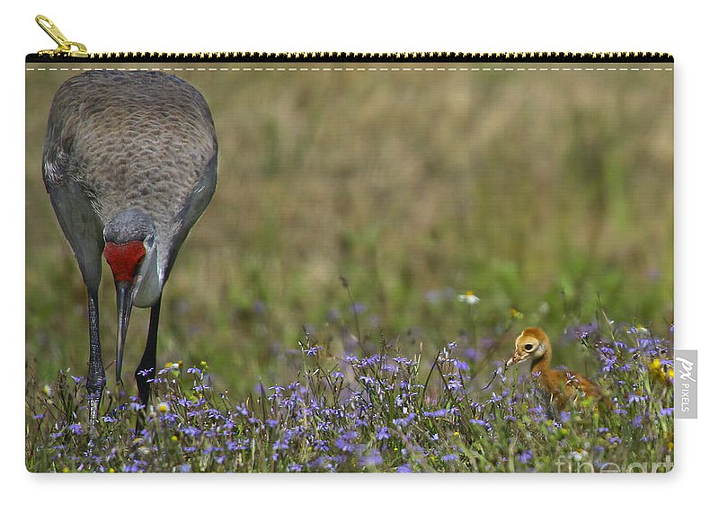 Sandhill Crane Carry-all Pouch featuring the photograph Hiding In The Flowers by Barbara Bowen