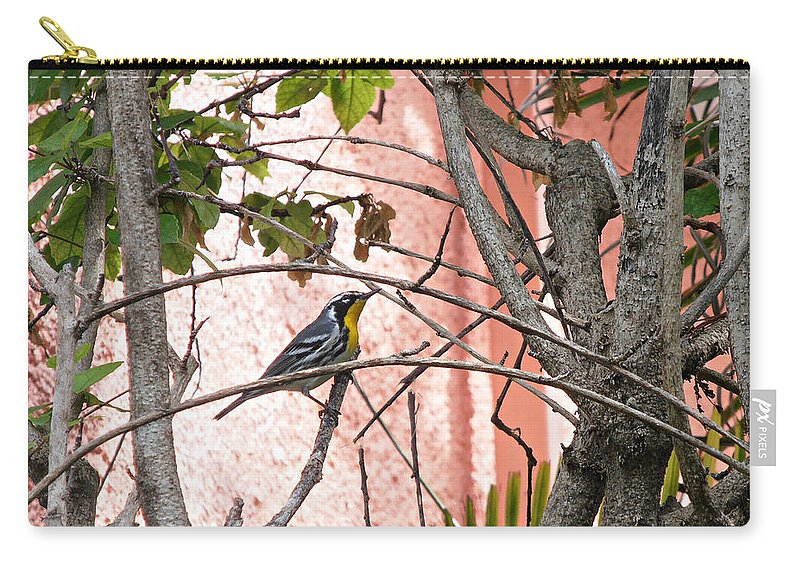 Bird Carry-all Pouch featuring the photograph Hiding In The Gardens by Kimberly Perry