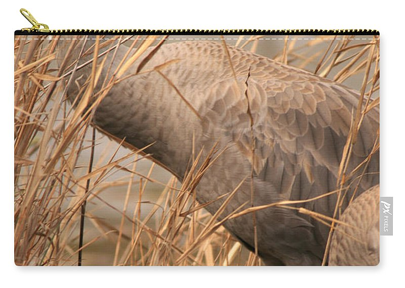 Sandhill Cranes Carry-all Pouch featuring the photograph High And Low by Crystal Heitzman Renskers