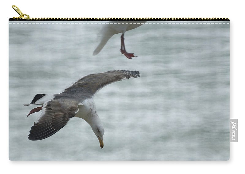 Seagull Carry-all Pouch featuring the photograph High Dive by Ernie Echols