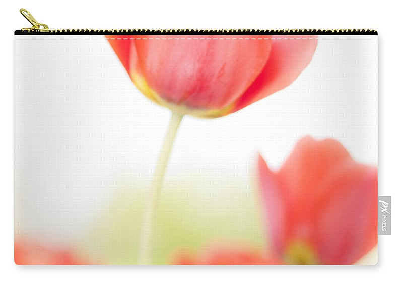 3scape Carry-all Pouch featuring the photograph High Key Tulips by Adam Romanowicz