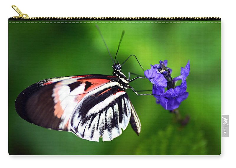 Butterfly Carry-all Pouch featuring the photograph Hint Of Red Butterfly by Vanessa Valdes