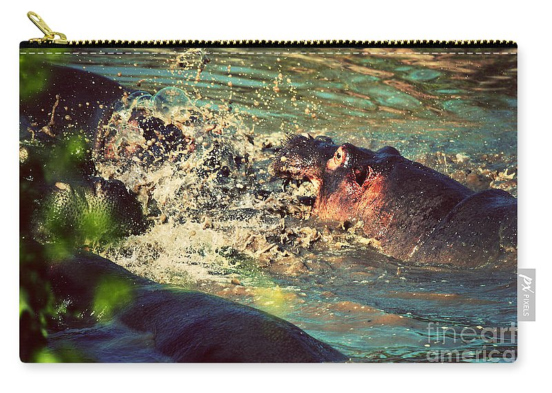 Hippo Carry-all Pouch featuring the photograph Hippopotamus Fight In River. Serengeti. Tanzania by Michal Bednarek