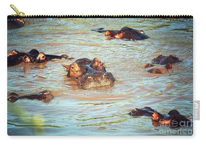 Hippo Carry-all Pouch featuring the photograph Hippopotamus Group In River. Serengeti. Tanzania by Michal Bednarek
