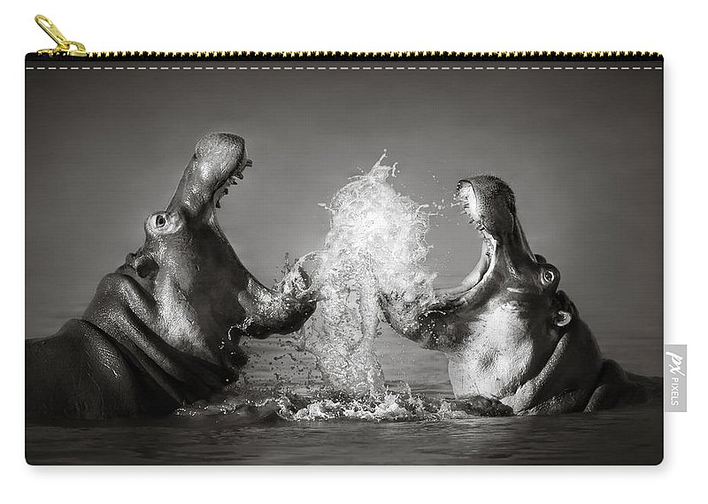 Hippo Carry-all Pouch featuring the photograph Hippo's Fighting by Johan Swanepoel