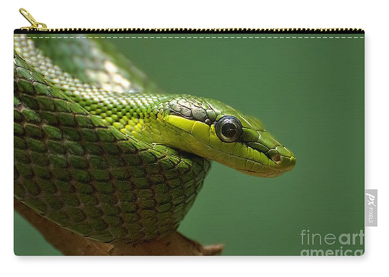 Green Carry-all Pouch featuring the photograph Hisssssss by Photos By Cassandra