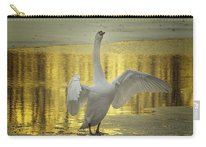 Swan Carry-all Pouch featuring the photograph Hit It Maestro by Michael J Samuels