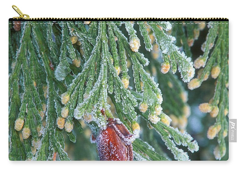 North America Carry-all Pouch featuring the photograph Hoarfrost On Pine Bough Yosemite National Park by Dave Welling