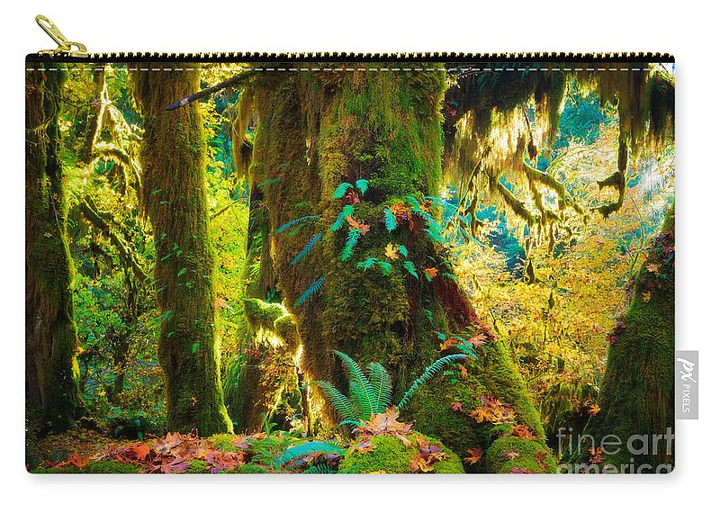 America Carry-all Pouch featuring the photograph Hoh Grove by Inge Johnsson