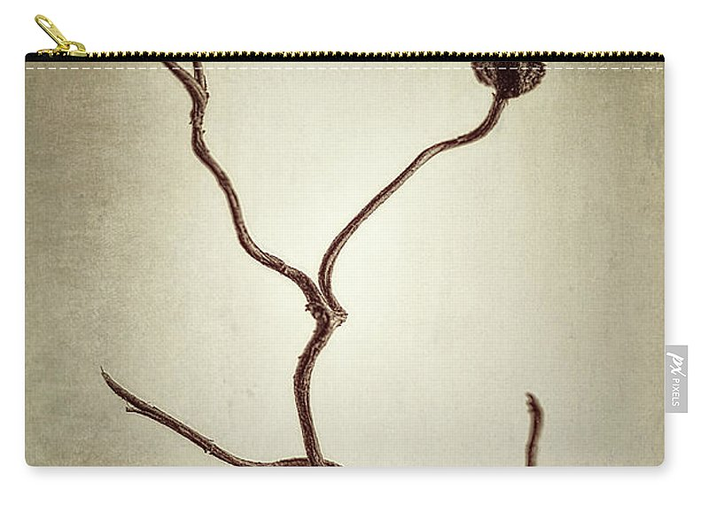 Vine Carry-all Pouch featuring the photograph Holdfast Rootlet by Scott Norris
