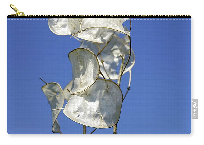 Drakelow Carry-all Pouch featuring the photograph Honesty Seed Pods by Rod Johnson
