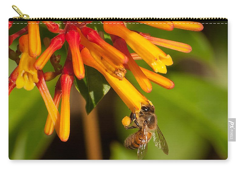 Black Carry-all Pouch featuring the photograph Honey Bee 7 by Photos By Cassandra