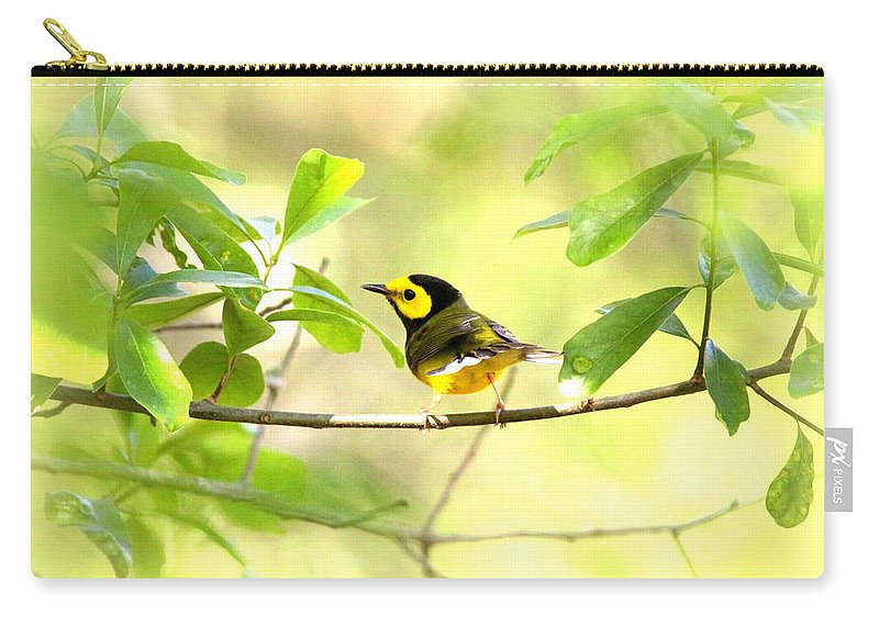Bird Carry-all Pouch featuring the photograph Hooded Warbler - Img_9274-007 by Travis Truelove