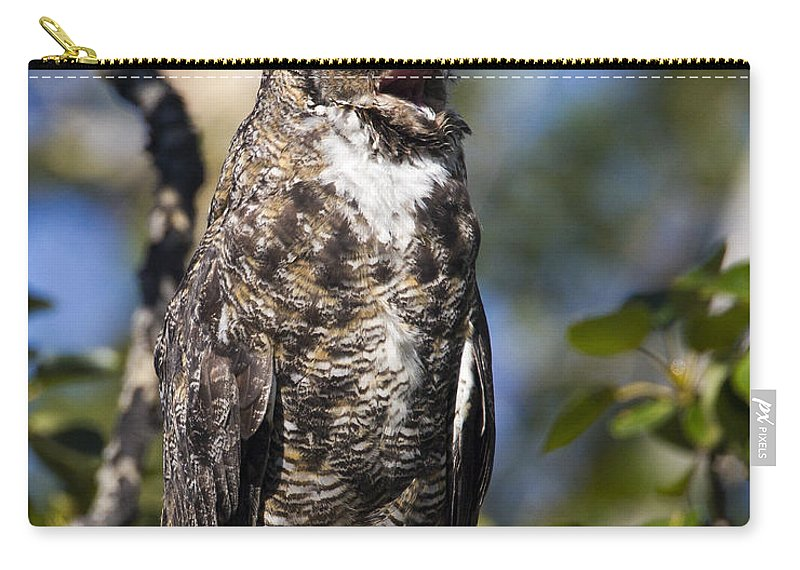 Doug Lloyd Carry-all Pouch featuring the photograph Hoot Hoot by Doug Lloyd