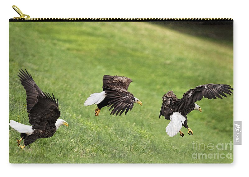Eagles Carry-all Pouch featuring the photograph Hop Skip And Jump by Claudia Kuhn