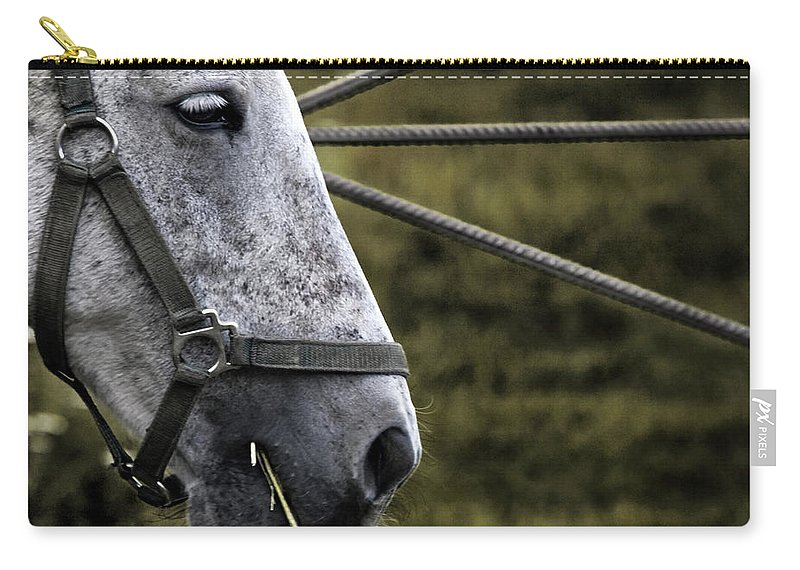 Horse Carry-all Pouch featuring the photograph Horse's Head by Angel Ciesniarska