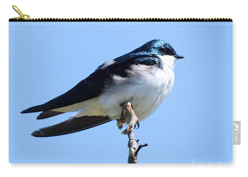 Wildlife Carry-all Pouch featuring the photograph House Martin by Paul Smith