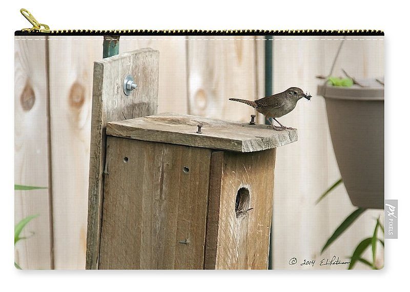Heron Heaven Carry-all Pouch featuring the photograph House Wren Feeding Time by Edward Peterson