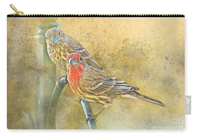 Nature Carry-all Pouch featuring the photograph Housefinch Pair With Texture by Debbie Portwood